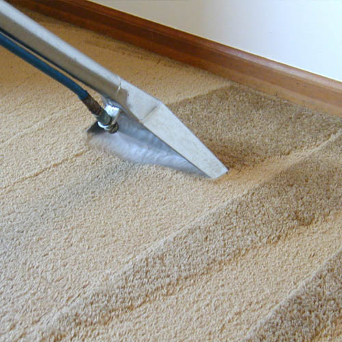 Industrial steam carpet cleaner on beige carpet being used for carpet cleaning in northampton