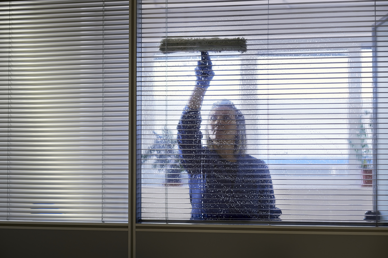 Cleaner cleaning office windows